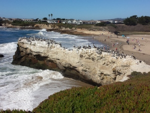 Natural Bridges State Beach from West Cliff Drive in Santa Cruz, California